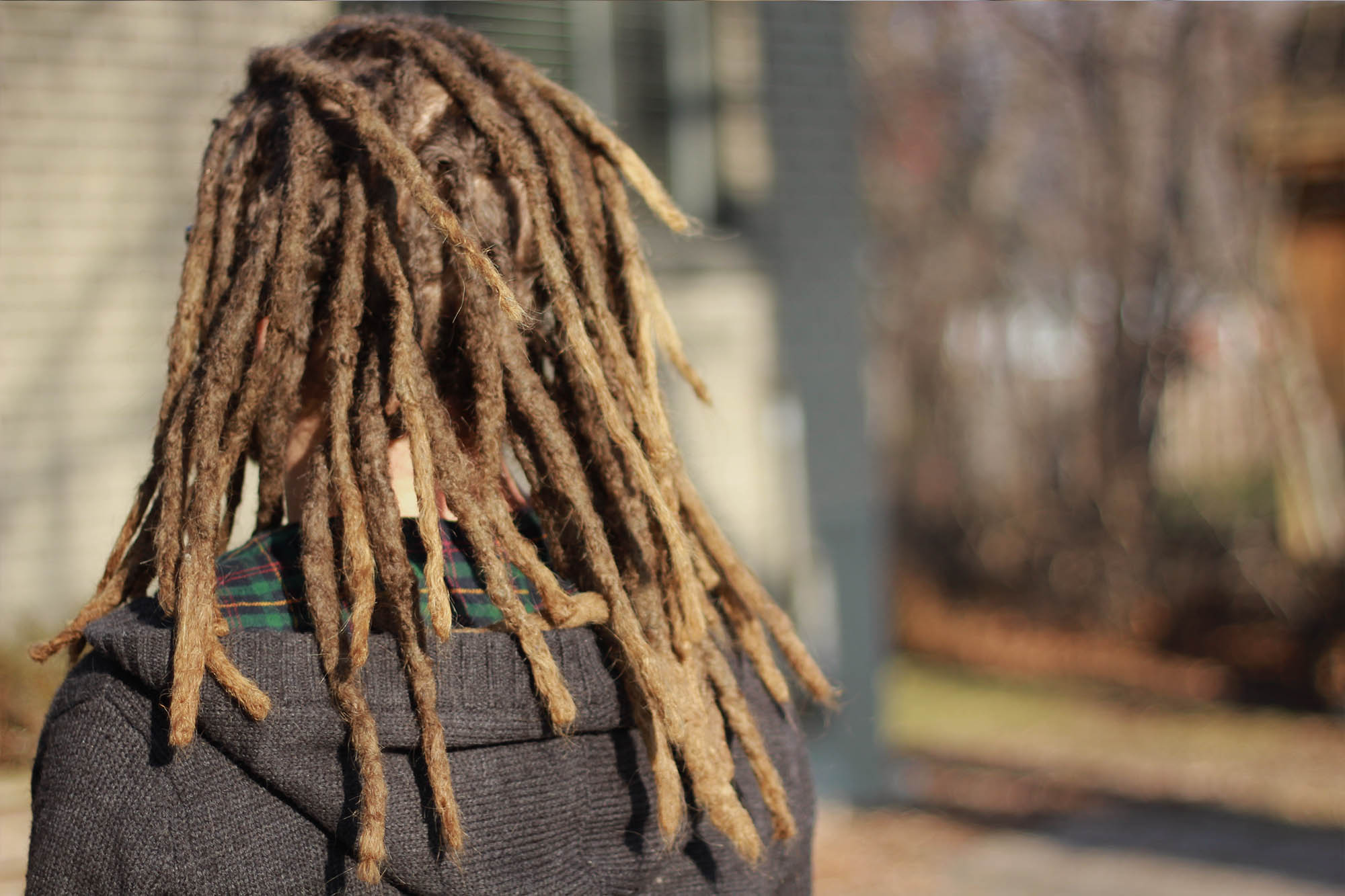 Back view of williams dreadlocks, brunette mix blonde guy with nice looking dreadlocks in Montreal.